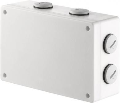 Comutator wireless RSL pentru exterior, montaj aparent, 2 canale, 2000 W